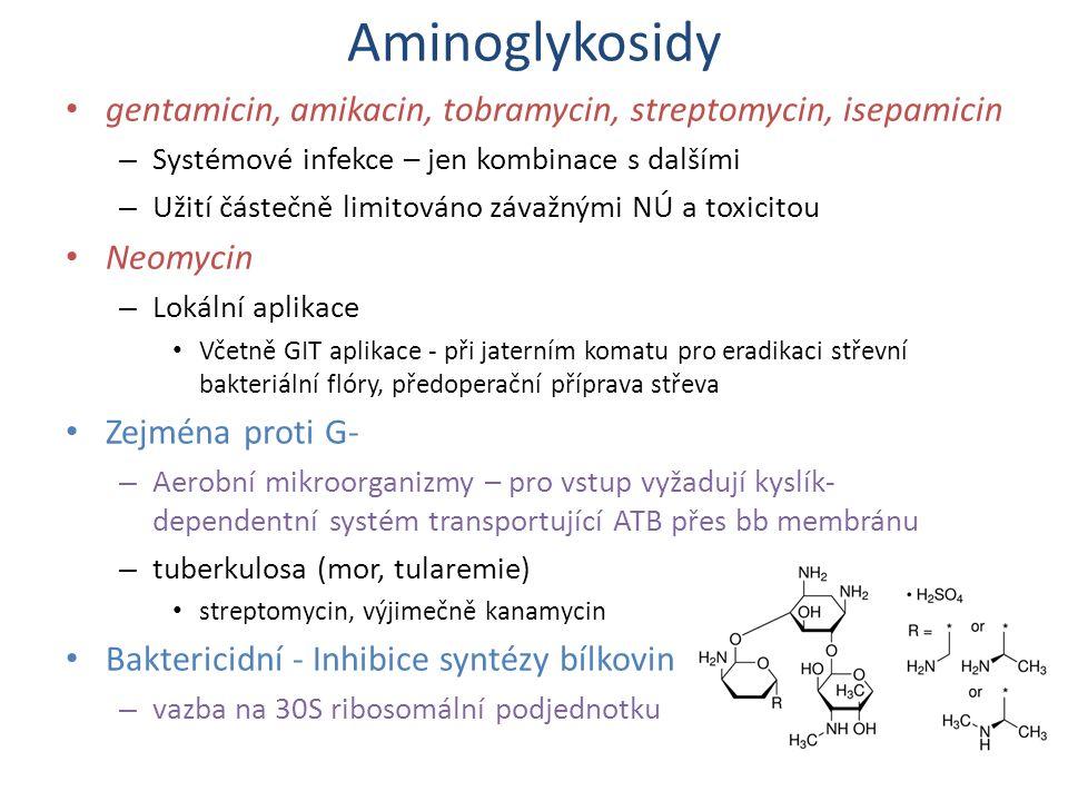 Aminoglykosidy gentamicin, amikacin, tobramycin, streptomycin, isepamicin – Systémové infekce – jen kombinace s dalšími – Užití částečně limitováno zá
