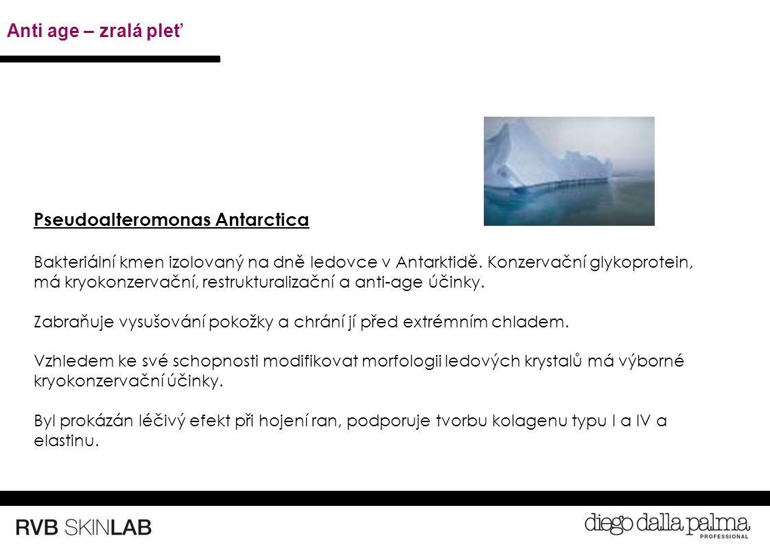 Pseudoalteromonas Antarctica Bakteriální kmen izolovaný na dně ledovce v Antarktidě.