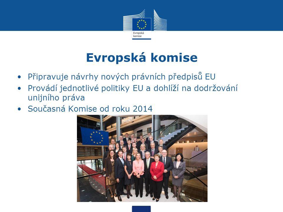 Evropská komise Připravuje návrhy nových právních předpisů EU Provádí jednotlivé politiky EU a dohlíží na dodržování unijního práva Současná Komise od roku 2014