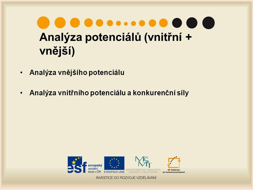 Analýza potenciálů (vnitřní + vnější) Analýza vnějšího potenciálu Analýza vnitřního potenciálu a konkurenční síly
