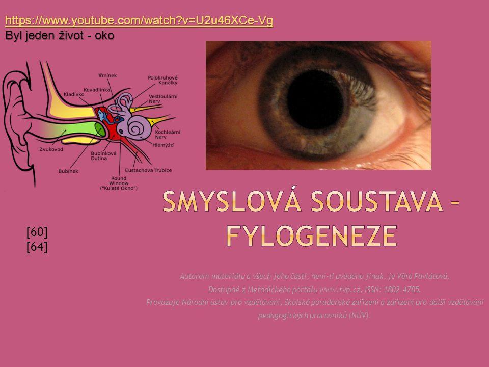  ZRAK  barevné vidění; sítnice je schopná regenerace; tři dobře vyvinutá oční víčka.