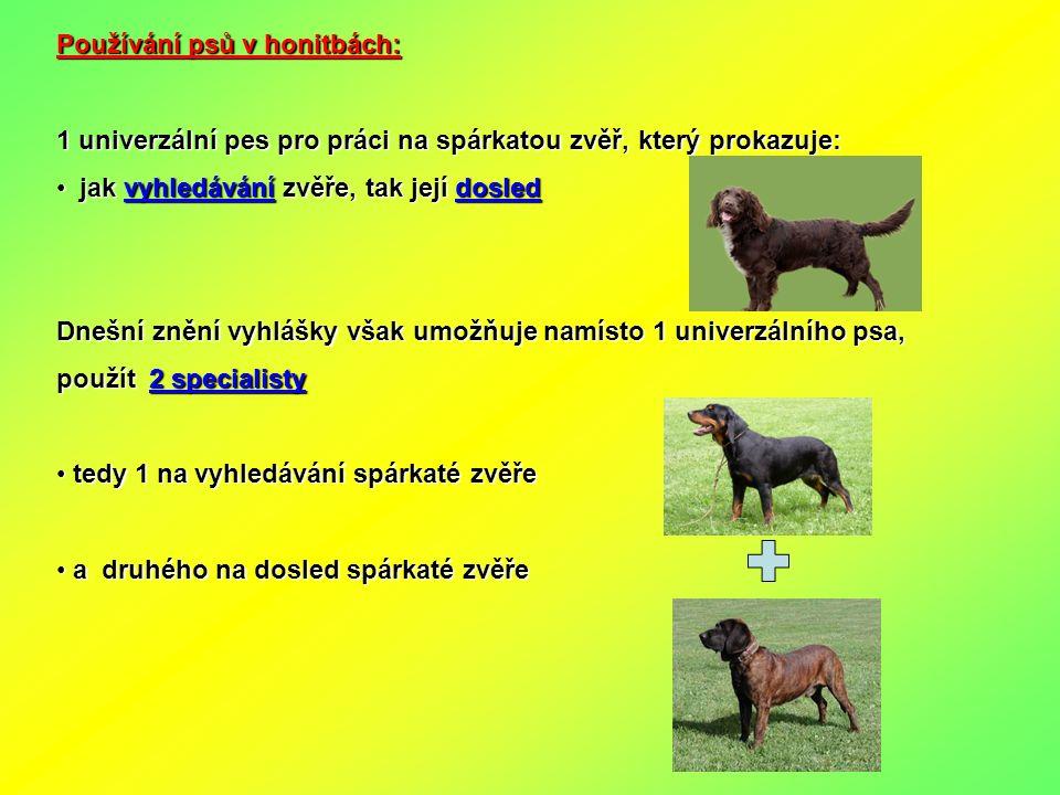 Používání psů v honitbách: 1 univerzální pes pro práci na spárkatou zvěř, který prokazuje: jak vyhledávání zvěře, tak její dosled jak vyhledávání zvěř