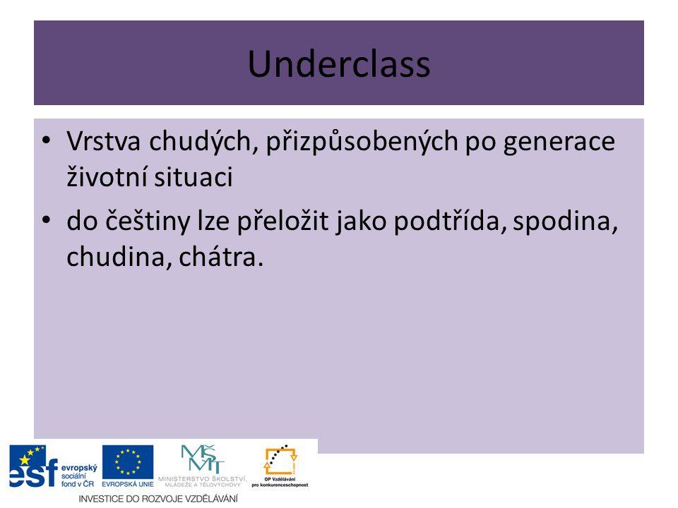 Underclass Vrstva chudých, přizpůsobených po generace životní situaci do češtiny lze přeložit jako podtřída, spodina, chudina, chátra.