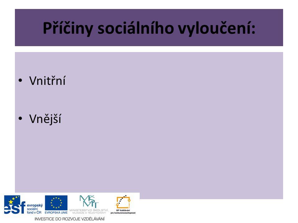 Příčiny sociálního vyloučení: Vnitřní Vnější