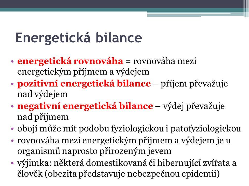 Energetická bilance energetická rovnováha = rovnováha mezi energetickým příjmem a výdejem pozitivní energetická bilance – příjem převažuje nad výdejem negativní energetická bilance – výdej převažuje nad příjmem obojí může mít podobu fyziologickou i patofyziologickou rovnováha mezi energetickým příjmem a výdejem je u organismů naprosto přirozeným jevem výjimka: některá domestikovaná či hibernující zvířata a člověk (obezita představuje nebezpečnou epidemii)