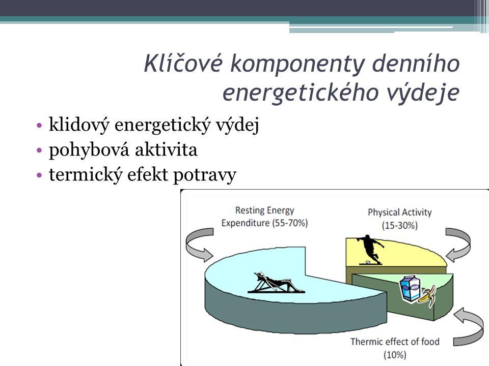 Klíčové komponenty denního energetického výdeje klidový energetický výdej pohybová aktivita termický efekt potravy