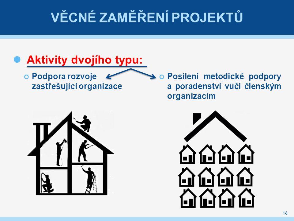 VĚCNÉ ZAMĚŘENÍ PROJEKTŮ Aktivity dvojího typu: Podpora rozvoje zastřešující organizace Posílení metodické podpory a poradenství vůči členským organiza