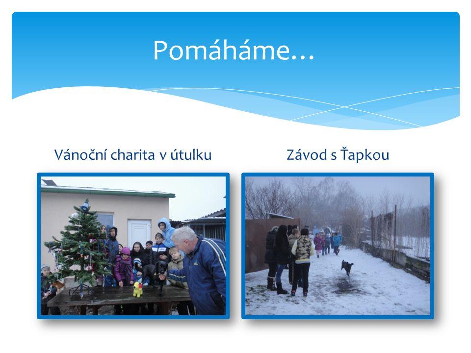Pomáháme… Vánoční charita v útulkuZávod s Ťapkou