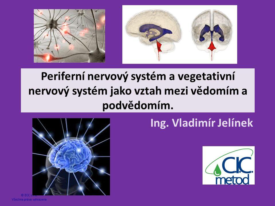 Periferní nervový systém a vegetativní nervový systém jako vztah mezi vědomím a podvědomím. Ing. Vladimír Jelínek © ECC s.r.o. Všechna práva vyhrazena