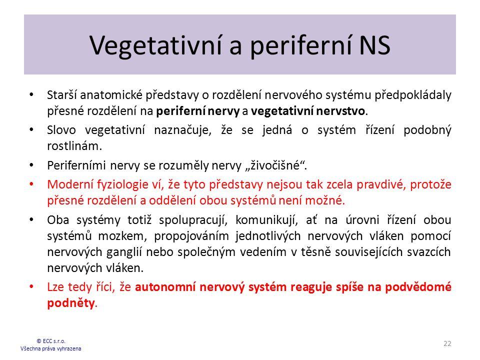 Vegetativní a periferní NS Starší anatomické představy o rozdělení nervového systému předpokládaly přesné rozdělení na periferní nervy a vegetativní n