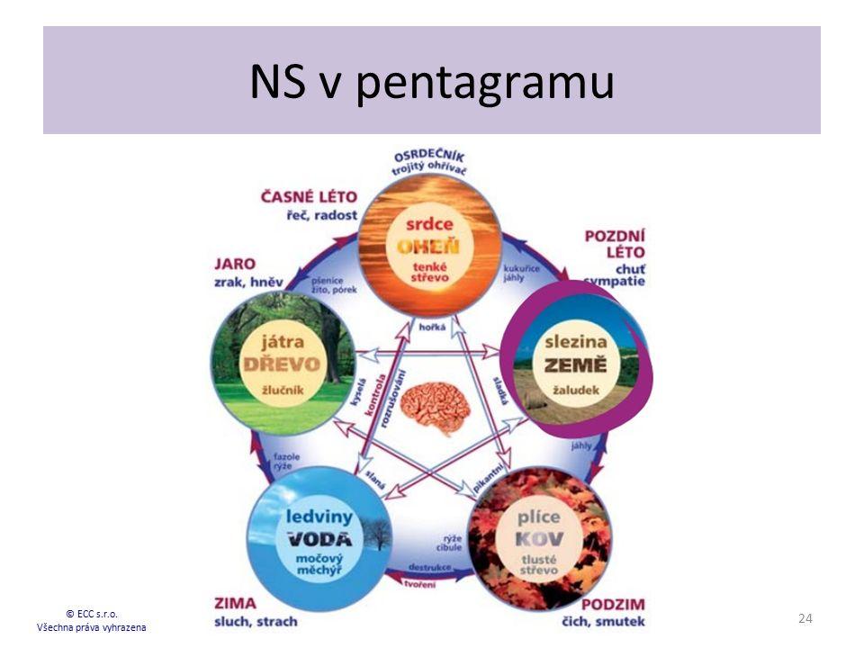 NS v pentagramu © ECC s.r.o. Všechna práva vyhrazena 24