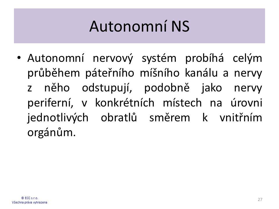 Autonomní NS Autonomní nervový systém probíhá celým průběhem páteřního míšního kanálu a nervy z něho odstupují, podobně jako nervy periferní, v konkré