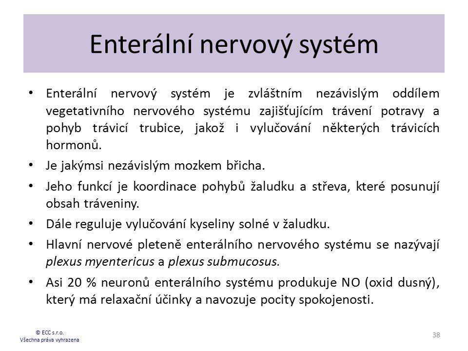 Enterální nervový systém Enterální nervový systém je zvláštním nezávislým oddílem vegetativního nervového systému zajišťujícím trávení potravy a pohyb