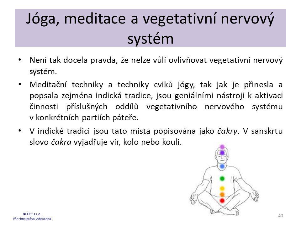 Jóga, meditace a vegetativní nervový systém Není tak docela pravda, že nelze vůlí ovlivňovat vegetativní nervový systém. Meditační techniky a techniky