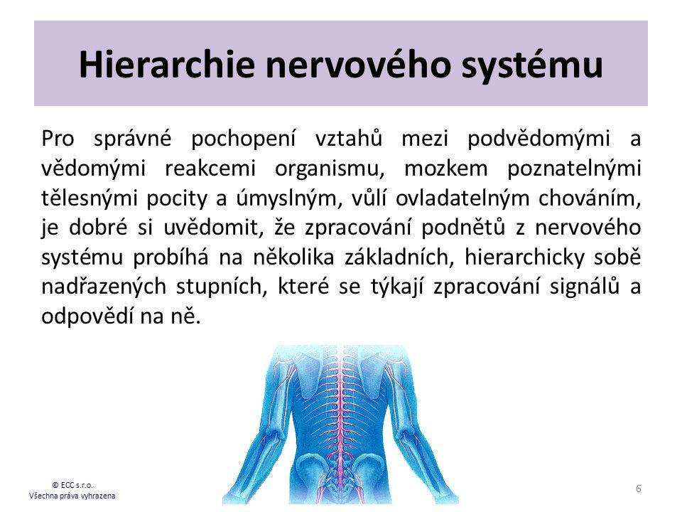 Hierarchie nervového systému Pro správné pochopení vztahů mezi podvědomými a vědomými reakcemi organismu, mozkem poznatelnými tělesnými pocity a úmysl