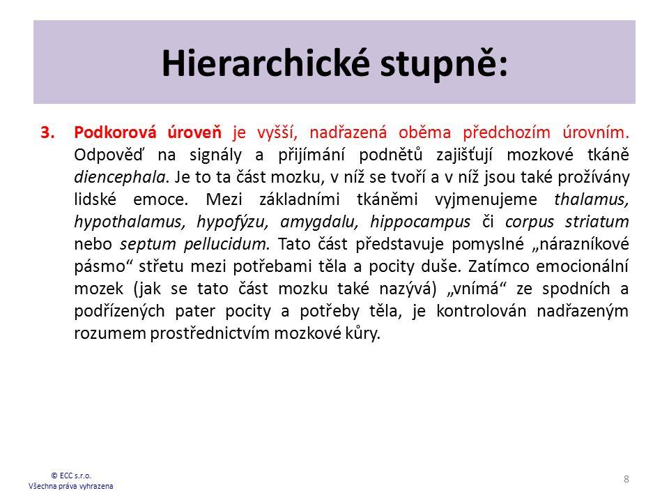 Hierarchické stupně: 3.Podkorová úroveň je vyšší, nadřazená oběma předchozím úrovním. Odpověď na signály a přijímání podnětů zajišťují mozkové tkáně d
