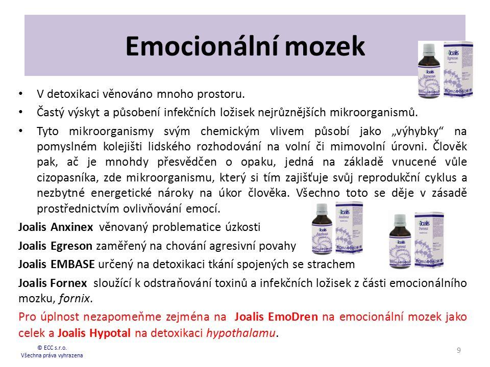 Emocionální mozek V detoxikaci věnováno mnoho prostoru. Častý výskyt a působení infekčních ložisek nejrůznějších mikroorganismů. Tyto mikroorganismy s