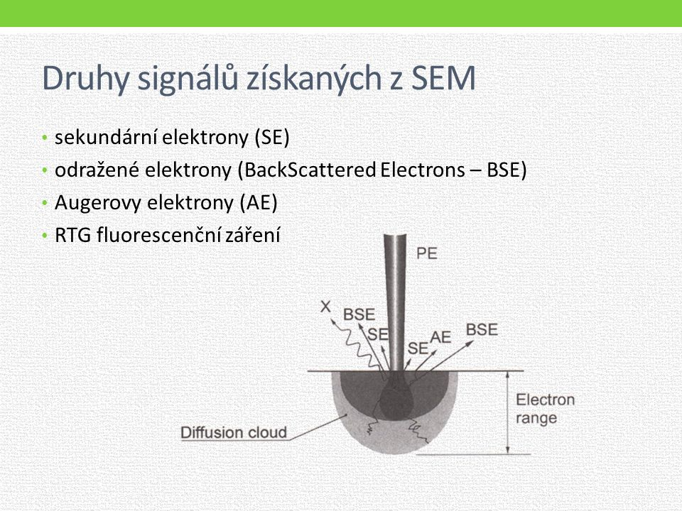 Druhy signálů získaných z SEM sekundární elektrony (SE) odražené elektrony (BackScattered Electrons – BSE) Augerovy elektrony (AE) RTG fluorescenční záření
