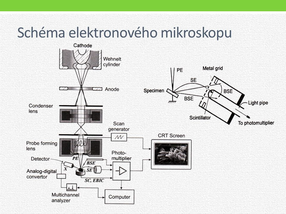 Schéma elektronového mikroskopu