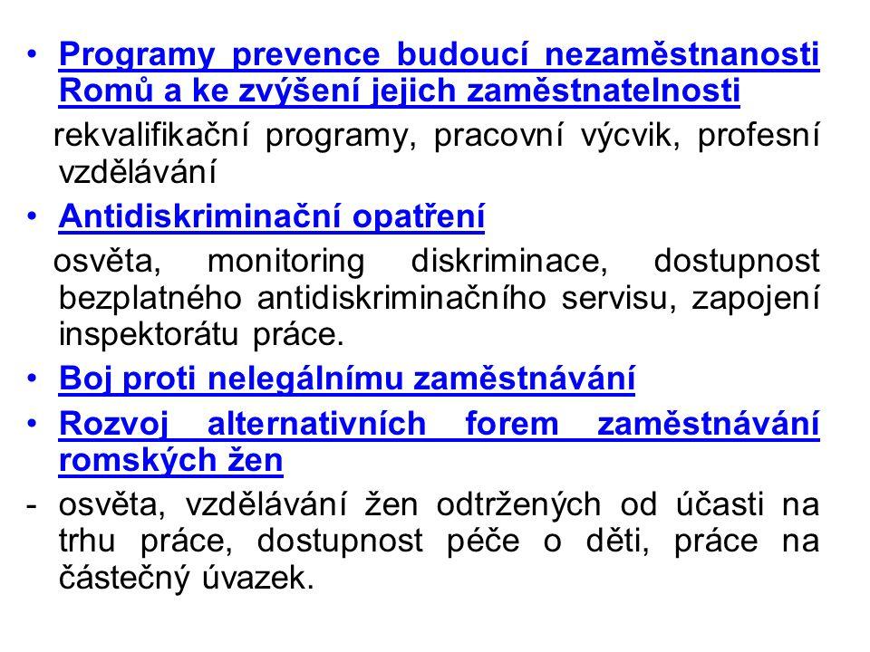Programy prevence budoucí nezaměstnanosti Romů a ke zvýšení jejich zaměstnatelnosti rekvalifikační programy, pracovní výcvik, profesní vzdělávání Anti