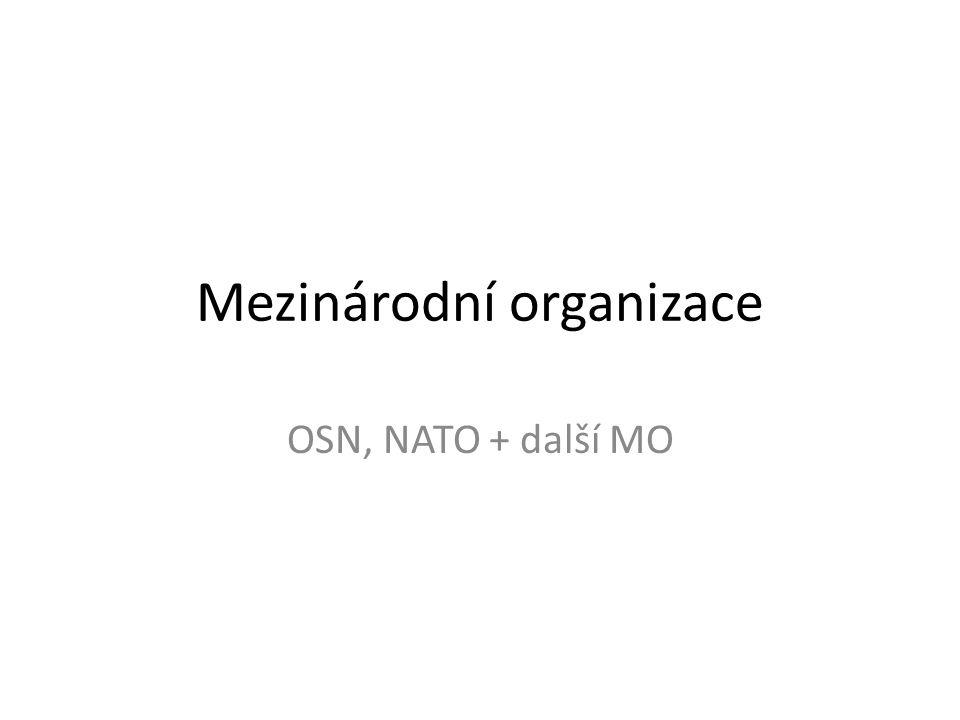 Mezinárodní organizace OSN, NATO + další MO