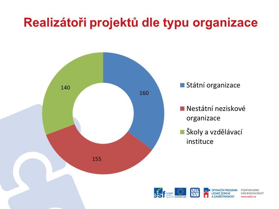 Realizátoři projektů dle typu organizace