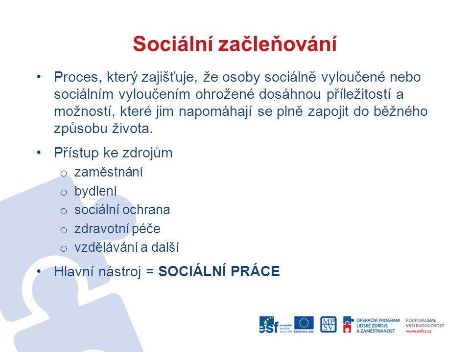 Sociální začleňování Proces, který zajišťuje, že osoby sociálně vyloučené nebo sociálním vyloučením ohrožené dosáhnou příležitostí a možností, které j