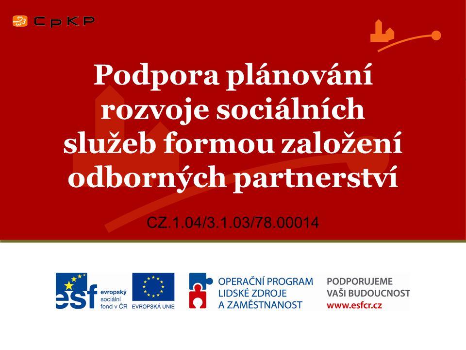 Podpora plánování rozvoje sociálních služeb formou založení odborných partnerství CZ.1.04/3.1.03/78.00014