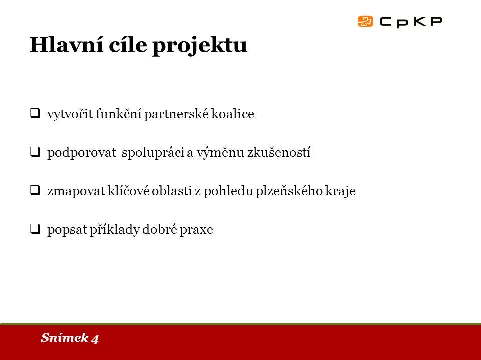 Snímek 4 Hlavní cíle projektu  vytvořit funkční partnerské koalice  podporovat spolupráci a výměnu zkušeností  zmapovat klíčové oblasti z pohledu plzeňského kraje  popsat příklady dobré praxe
