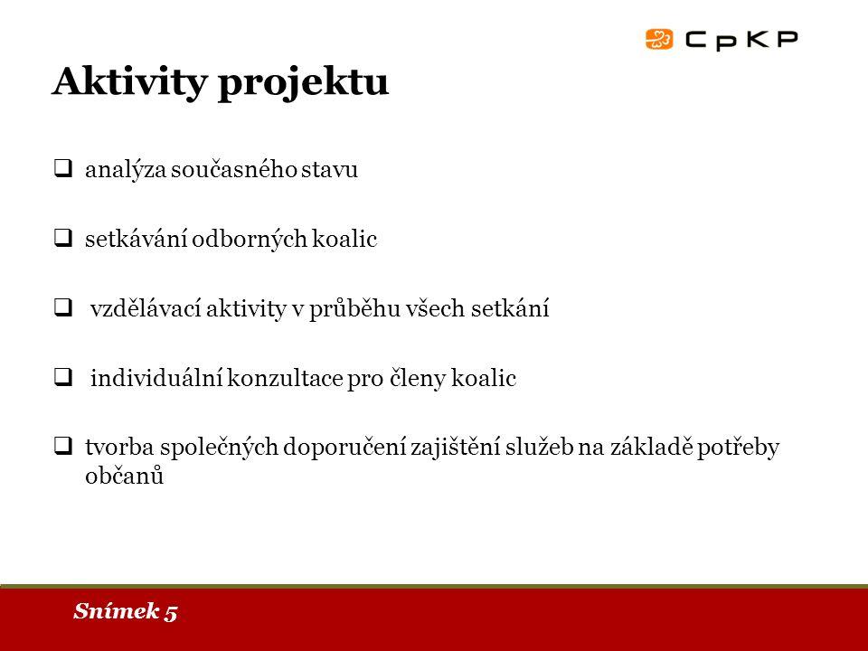 Snímek 5 Aktivity projektu  analýza současného stavu  setkávání odborných koalic  vzdělávací aktivity v průběhu všech setkání  individuální konzultace pro členy koalic  tvorba společných doporučení zajištění služeb na základě potřeby občanů