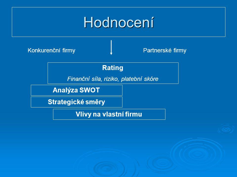 Hodnocení Konkurenční firmyPartnerské firmy Rating Finanční síla, riziko, platební skóre Analýza SWOT Strategické směry Vlivy na vlastní firmu
