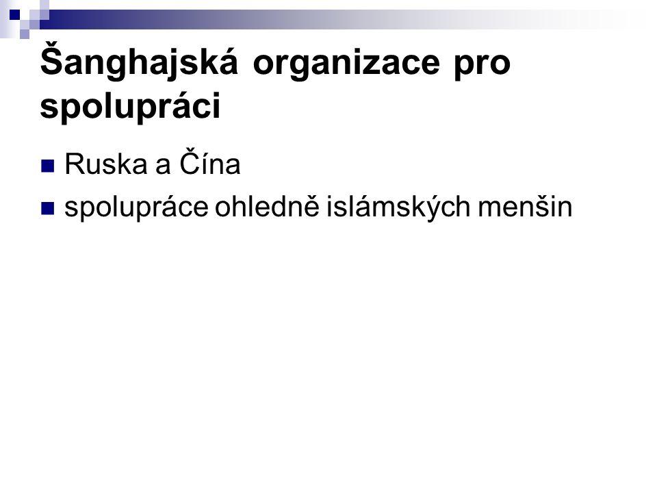 Šanghajská organizace pro spolupráci Ruska a Čína spolupráce ohledně islámských menšin