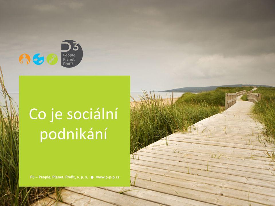 Co je sociální podnikání
