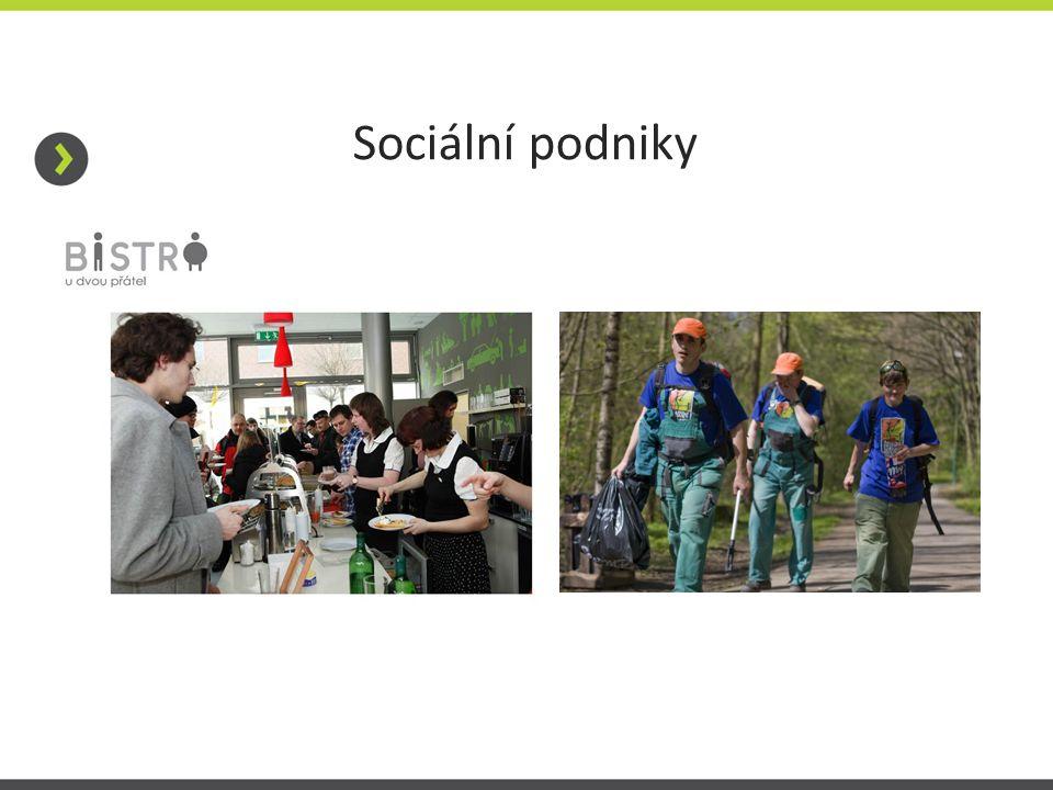 Sociální podniky
