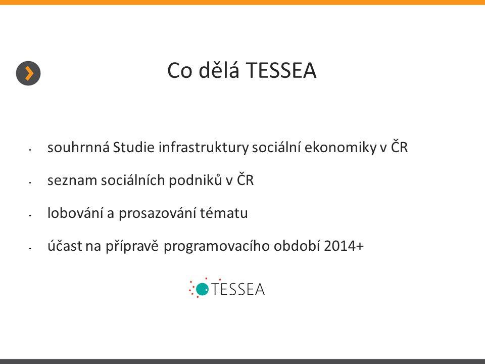 Co dělá TESSEA souhrnná Studie infrastruktury sociální ekonomiky v ČR seznam sociálních podniků v ČR lobování a prosazování tématu účast na přípravě programovacího období 2014+