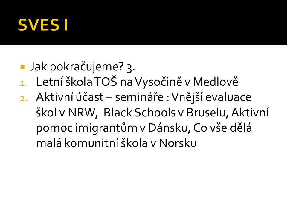  Jak pokračujeme. 3. 1. Letní škola TOŠ na Vysočině v Medlově 2.