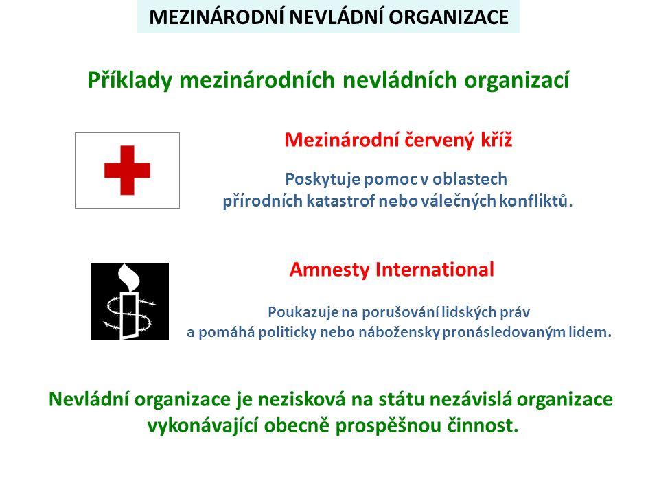 MEZINÁRODNÍ NEVLÁDNÍ ORGANIZACE Příklady mezinárodních nevládních organizací Mezinárodní červený kříž Poskytuje pomoc v oblastech přírodních katastrof nebo válečných konfliktů.
