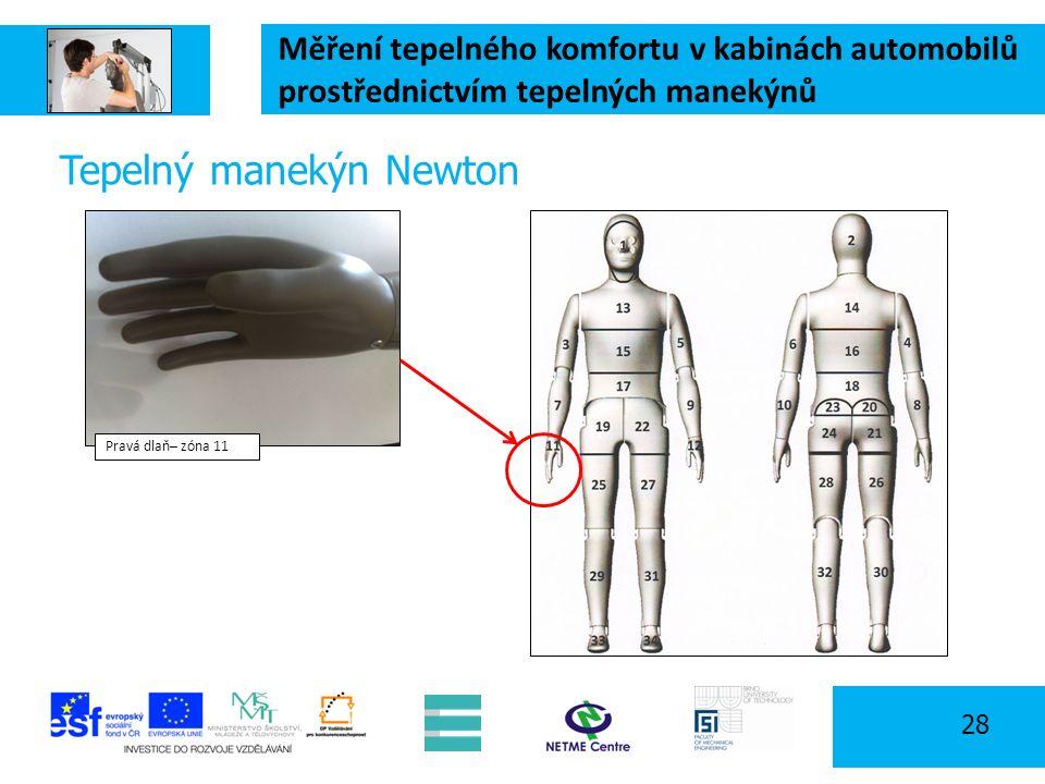 Měření tepelného komfortu v kabinách automobilů prostřednictvím tepelných manekýnů 28 Tepelný manekýn Newton Pravá dlaň– zóna 11