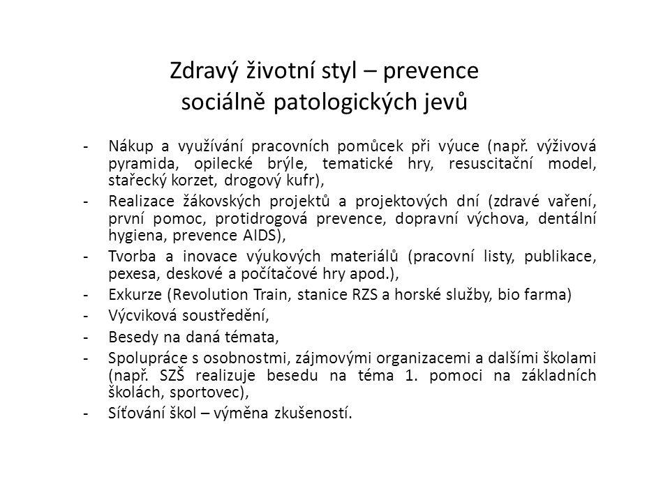 Zdravý životní styl – prevence sociálně patologických jevů -Nákup a využívání pracovních pomůcek při výuce (např. výživová pyramida, opilecké brýle, t