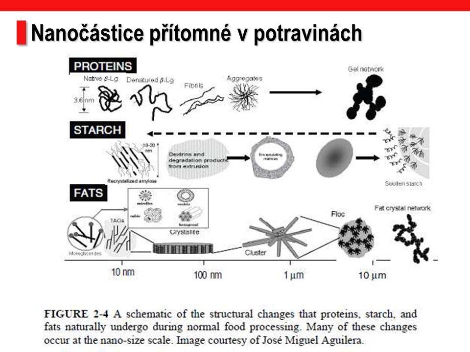 Nanočástice přítomné v potravinách 2