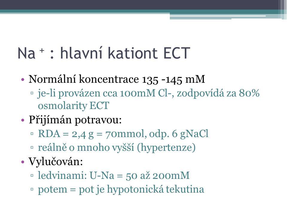 Na + : hlavní kationt ECT Normální koncentrace 135 -145 mM ▫je-li provázen cca 100mM Cl-, zodpovídá za 80% osmolarity ECT Přijímán potravou: ▫RDA = 2,4 g = 70mmol, odp.