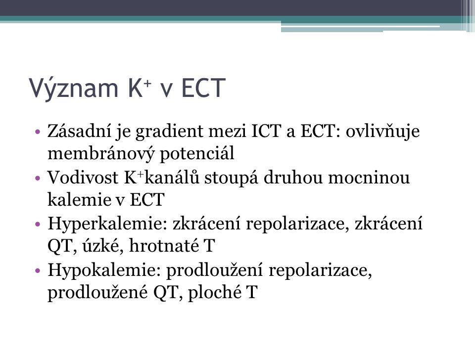 Význam K + v ECT Zásadní je gradient mezi ICT a ECT: ovlivňuje membránový potenciál Vodivost K + kanálů stoupá druhou mocninou kalemie v ECT Hyperkalemie: zkrácení repolarizace, zkrácení QT, úzké, hrotnaté T Hypokalemie: prodloužení repolarizace, prodloužené QT, ploché T
