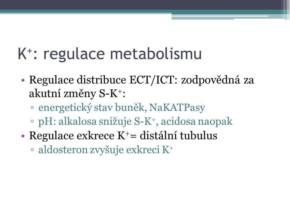 K + : regulace metabolismu Regulace distribuce ECT/ICT: zodpovědná za akutní změny S-K + : ▫energetický stav buněk, NaKATPasy ▫pH: alkalosa snižuje S-K +, acidosa naopak Regulace exkrece K + = distální tubulus ▫aldosteron zvyšuje exkreci K +