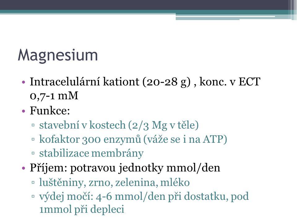 Magnesium Intracelulární kationt (20-28 g), konc.