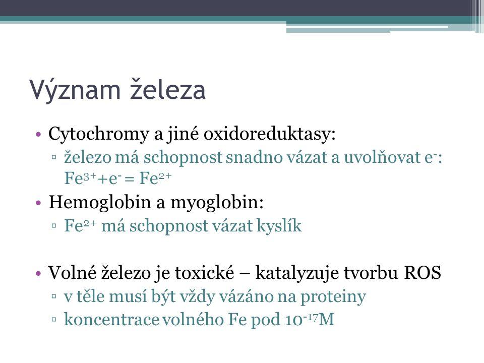 Význam železa Cytochromy a jiné oxidoreduktasy: ▫železo má schopnost snadno vázat a uvolňovat e - : Fe 3+ +e - = Fe 2+ Hemoglobin a myoglobin: ▫Fe 2+ má schopnost vázat kyslík Volné železo je toxické – katalyzuje tvorbu ROS ▫v těle musí být vždy vázáno na proteiny ▫koncentrace volného Fe pod 10 -17 M