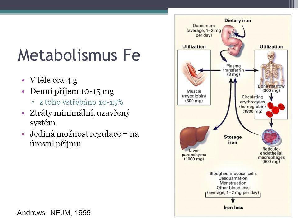 Metabolismus Fe V těle cca 4 g Denní příjem 10-15 mg ▫z toho vstřebáno 10-15% Ztráty minimální, uzavřený systém Jediná možnost regulace = na úrovni příjmu Andrews, NEJM, 1999
