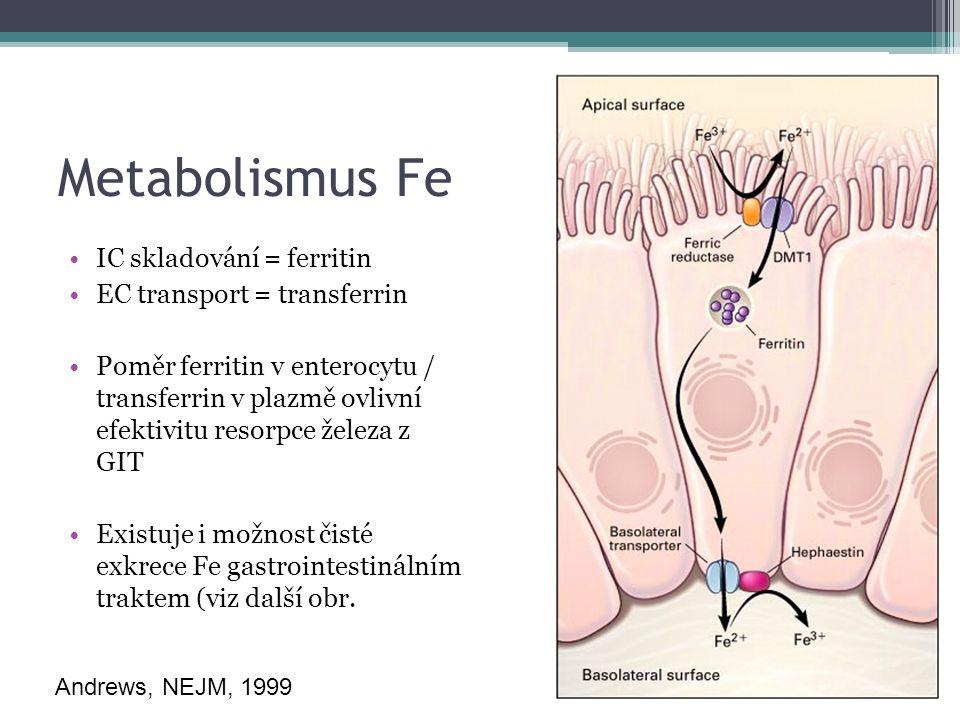 Metabolismus Fe IC skladování = ferritin EC transport = transferrin Poměr ferritin v enterocytu / transferrin v plazmě ovlivní efektivitu resorpce železa z GIT Existuje i možnost čisté exkrece Fe gastrointestinálním traktem (viz další obr.