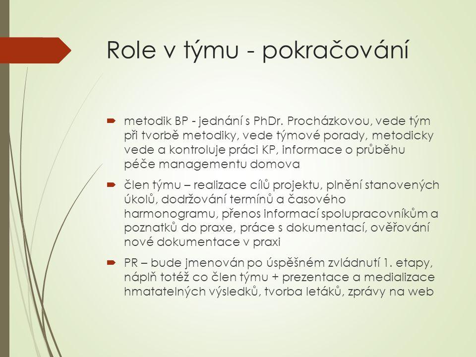 Role v týmu - pokračování  metodik BP - jednání s PhDr.