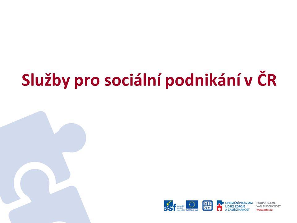 Služby pro sociální podnikání v ČR