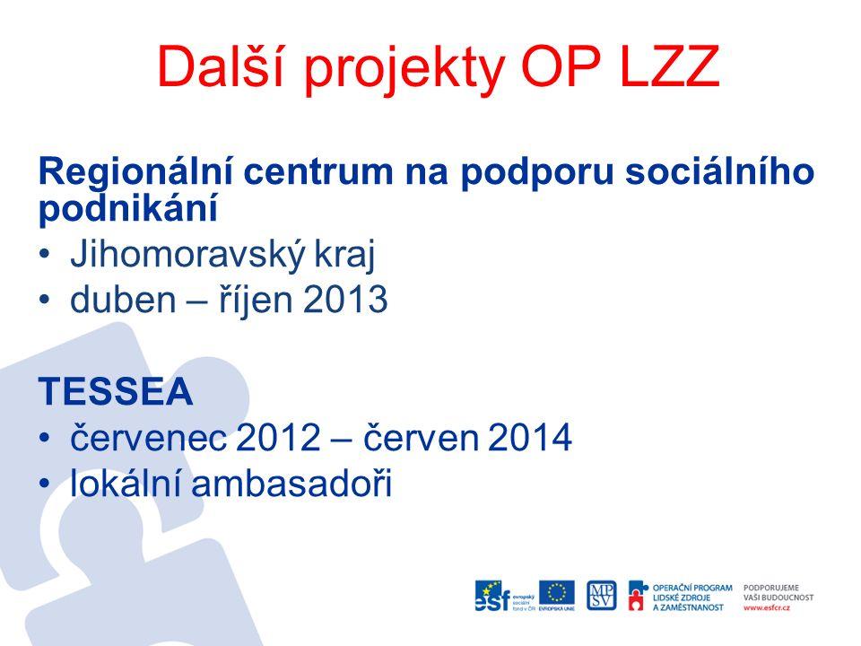 Další projekty OP LZZ Regionální centrum na podporu sociálního podnikání Jihomoravský kraj duben – říjen 2013 TESSEA červenec 2012 – červen 2014 lokál
